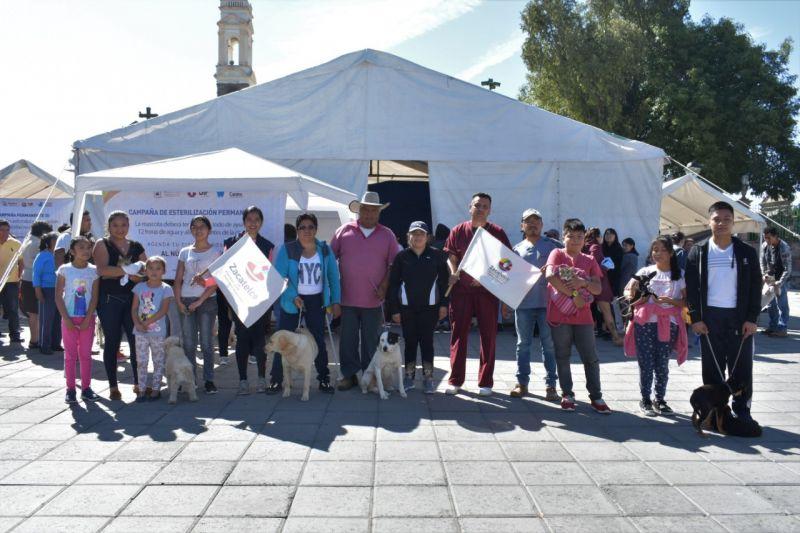 ESTERILIZACIÓN CANINA Y FELINA EN ZACATELCO